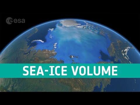 Arctic sea-ice volume 2010–19