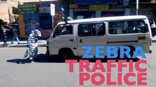 Zebra Traffic Police
