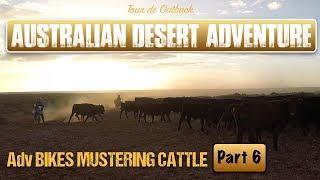 Australian Desert Adventure Part SIX