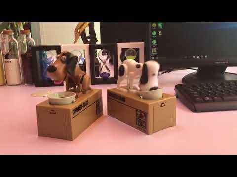 Hapnis Dog Coin Bank!