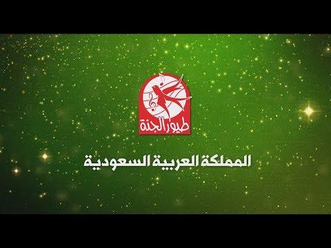 إعلان حفلات طيور الجنة في السعودية 2017