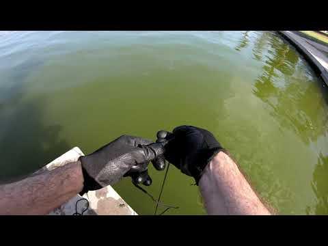Pesca Con Imán En Los Ángeles California