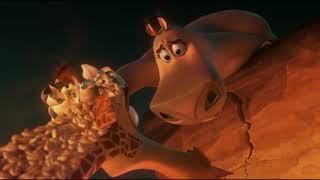 Бегемотиха Глория спасает Жирафа Мелмана ... отрывок из мультфильма (Мадагаскар 2/Madagascar 2)2008