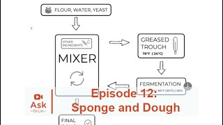 How to Use the Sponge and Dough Technique | Ask Dr. Lin Ep 12 | BAKERpedia