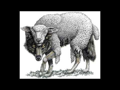 Czarny iTek Network Wolf ( ragga rap )