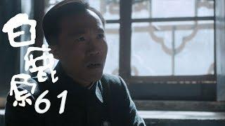 白鹿原 | White Deer 61【DVD版】(張嘉譯、秦海璐、何冰等主演)