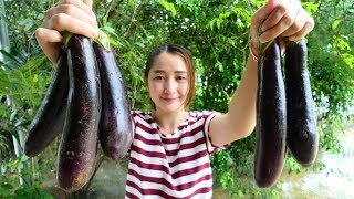 Yummy Eggplant Stir Fried Pork Shrimp Recipe - Eggplant Cooking With Shrimp Pork - Cooking With Sros