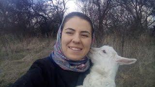 Влог 1. Весенний. Темы будущих видео, пастьба козлят и ягнят, прелести жизни в деревне.