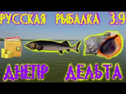 Русская рыбалка 3.9. Днепр Дельта. Белуга Чёрноморская - Рапана.