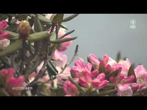 Doku Traumhaftes Taiwan HD