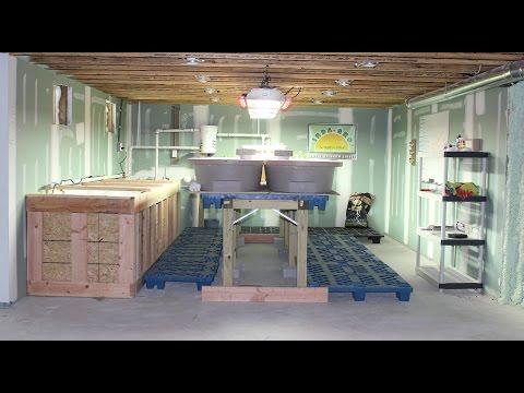 Part 1 Aquaponics basement system organic/food grade overview 101 w/ grow lights