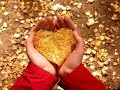 POWERFUL BIBLE STUDY - A Thankful Heart