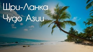 видео Шри Ланка - чудо-остров в Индийском океане