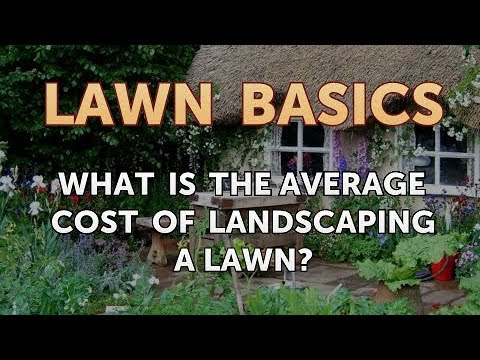 What Is The Average Cost Of Landscaping A Lawn You