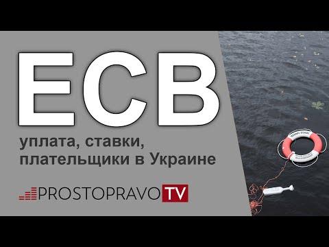 ЕСВ в 2019 году: уплата, ставки, плательщики в Украине