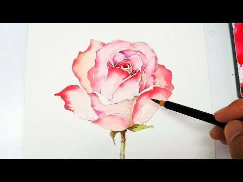 [lvl4]-rose-painting-tutorial