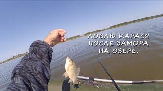 Первая рыбалка на озере после замора рыбы на поплавок