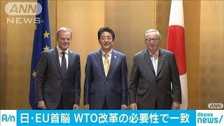 安倍総理がEU首脳と会談 WTO改革の必要性で一致(19/06/28)