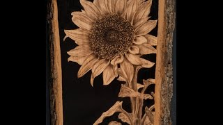 Handmade Pyrography Of A Sunflower (time-lapse 256x)