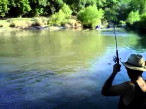 Tipps Park Three Rivers Texas Huge CatFish