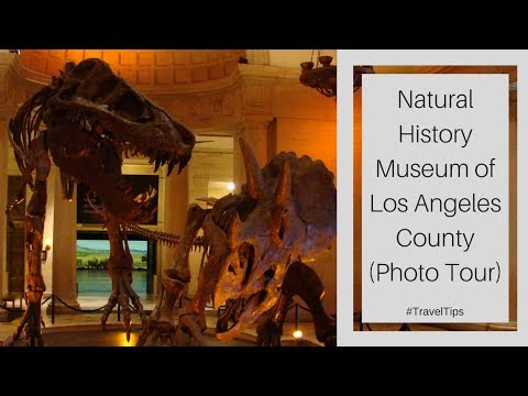 Natural History Museum of Los Angeles County (Photo Tour) #TravelTips