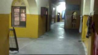 ALLAHABAD AGRICULTURAL INSTITUTE(DEEMED UNIVERSITY), SHIATS.wmv