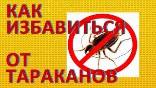 Как избавиться от тараканов.  Способы борьбы с тараканами(, 2014-12-10T14:44:12.000Z)
