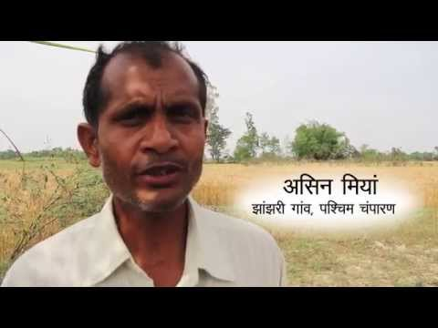 Soochna Seva mitra from West Champaran reports about miseries of  Asid Miyan