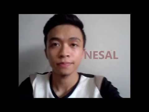 NESAL - Syta Jin (COVER)