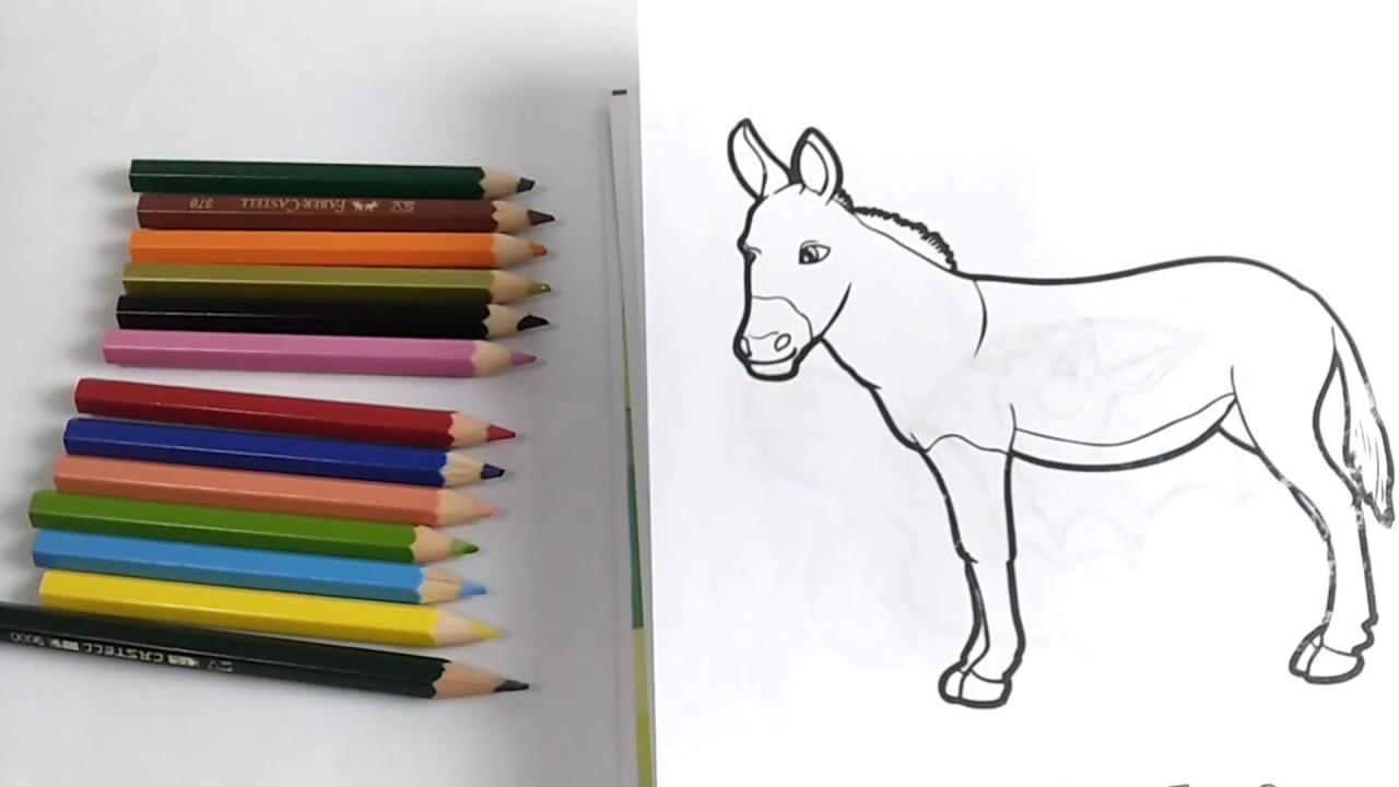 Belajar Mewarnai Keledai Untuk Anak