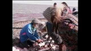92 01 TAMAPTA Celebrating the Bowhead Harvest in Aklavik 1991