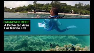 Ocean Adventure, Protecting Wild Life, It