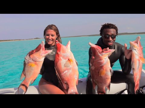 EP 05: Spearfishing Hogfish In The Bahamas