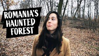 Romania's HAUNTED Forest! | Hoia Baciu Forest