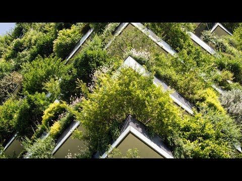 Los  Edificios Verdes - Bosco Verticale- Ciudad De  Milán  Italia