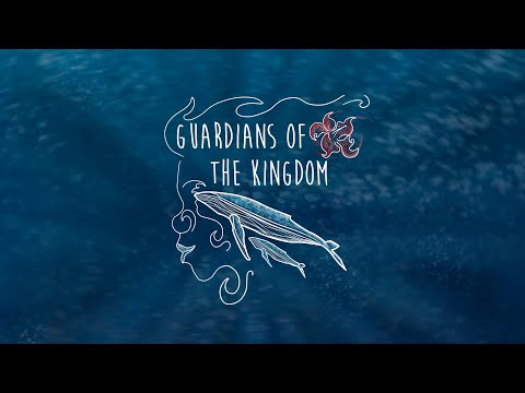 Guardians of the Kingdom VR