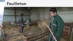 Dans les coulisses du lycée agricole de Fondettes en Indre-et-Loire (Épisode 02/04)