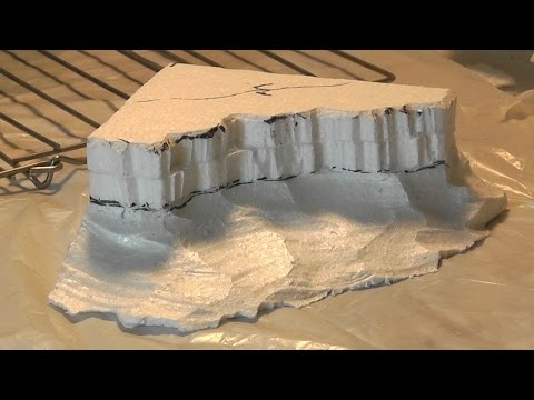 Safety Video Lizard-Landscapes