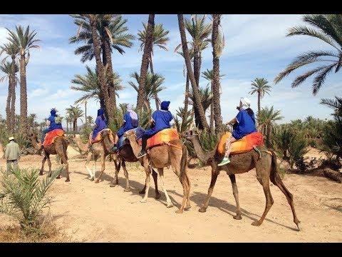 Viaggio ad Agadir Maggio Da Casablanca a Marrakech In Taxi