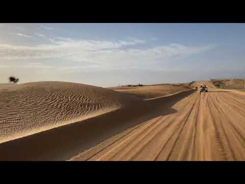 Desert Safari in Dubai Desert Conservation Reserve.