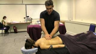 Mid course massage revision