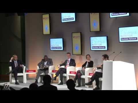 Panel Discussion: Achieving Impact in the 1,000 Days - Innovative Business Models