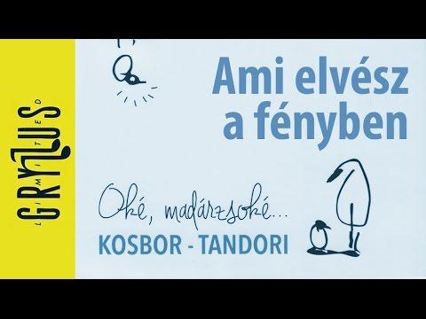 Kosbor – Tandori Dezső: Ami elvész a fényben (Oké, madárzsoké..., részlet)