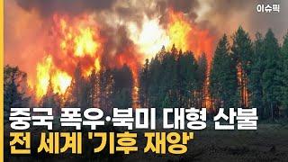 중국은 폭우·북미는 대형 산불 전 세계 '기후 재앙' …