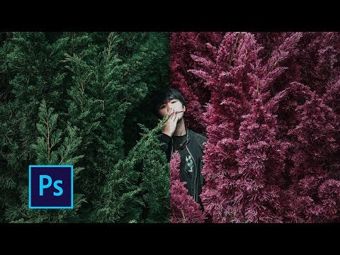 Как изменить определенный цвет в фотошопе