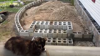 видео Бетонные дорожки на территории дачного участка: процесс создания