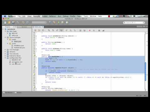 Java Persistence API 2: Java EE 6 & GlassFish 3 Using NetBeans 6.9 (Part 2 Of 5)
