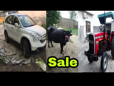 Trali,CRV Honda gaddi,MAssey241,Discover motercycal,malve di jhoti 2nd soe sale