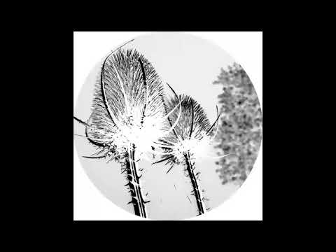 Svarog - Temple [AFFIN040LTD]