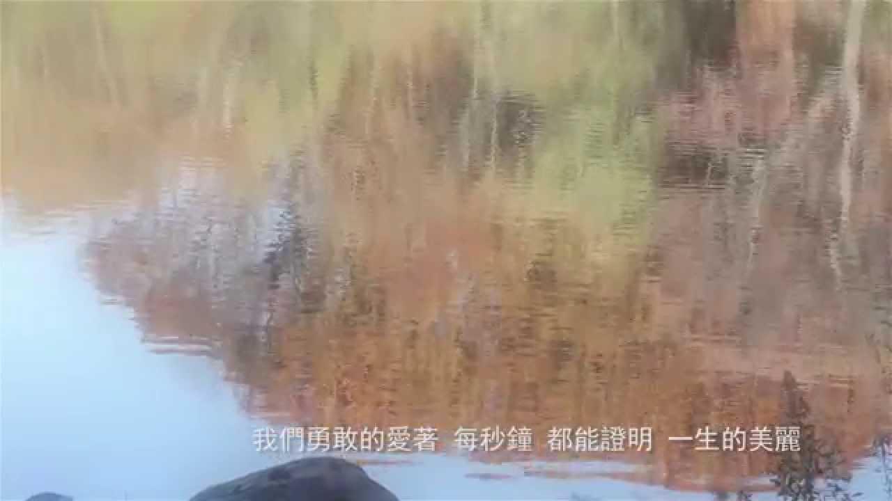Beautiful Love - Tanya 蔡健雅 高清CD Version - YouTube